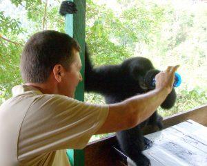 Copyright Grant Montgomery Indonesia w/monkey