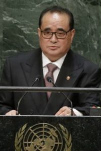 North Korean Foreign Minister Ri Su Yong
